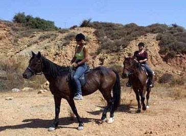 Alfa-Horse in Kos