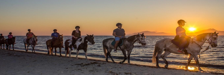 Horseride Trips